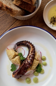 Oktopus mit Quinoa, Oliven & Avocadopüree - Laura Elena Photography